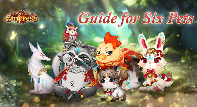 Guide For Six Pets